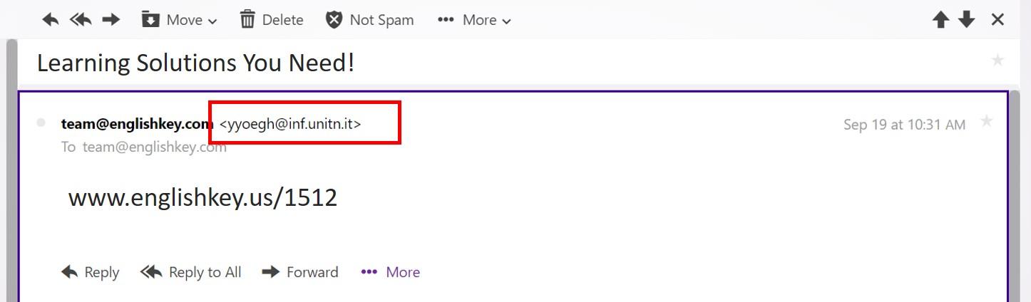 bogus email